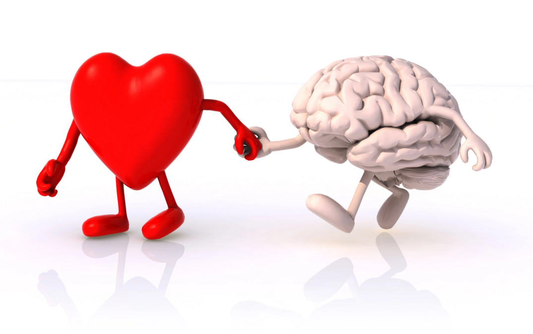 heart-and-brain-on-scale
